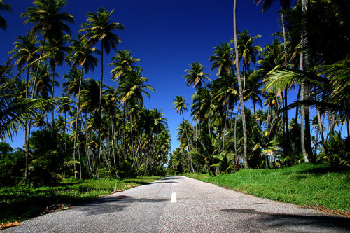 islandgirrrl:  the road to Mayaro beach by gablackburn on Flickr.