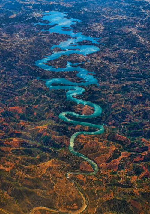 m0iety:  The Blue Dragon  by Steve Richards (Badger)
