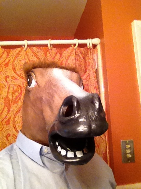 Horse mask acquired! It's glorious! Edit: Here's the link if you want one.