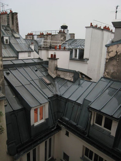 Paris, pluie(courtesy of __Olivier__)