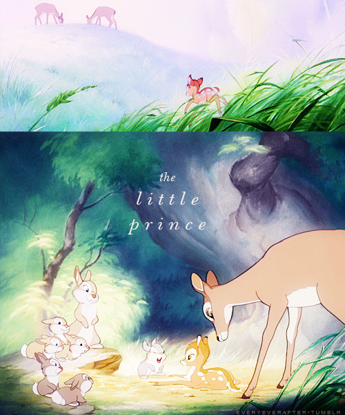 everyeverafter:  The life of the Little Prince.