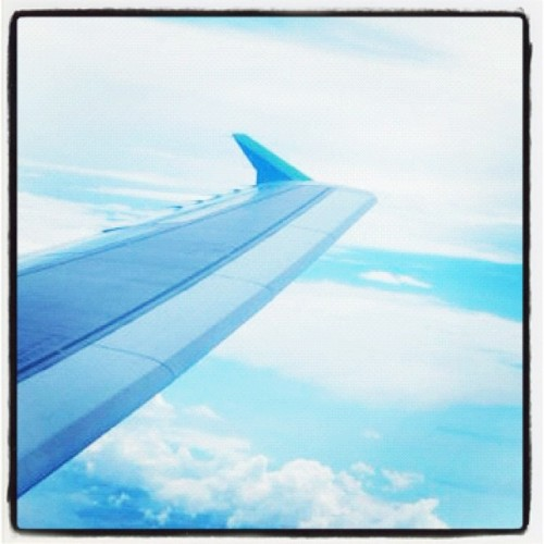 My favorite scenery ✈ #clear #blue #sky #instagood #instadaily - @belltwin- #webstagram