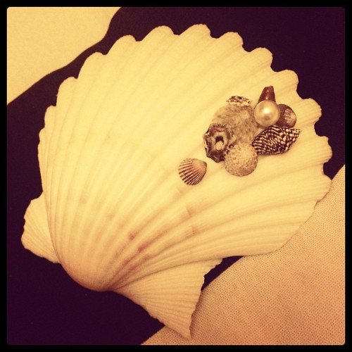 My new shell hairclip! And it's a real shel!! Winning at life #ariel #mermaid (Taken with instagram)
