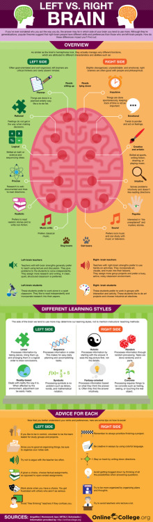 OnlineCollege.org and Infographic's   LEFT V. RIGHT BRAIN  (click on graphic for larger image)