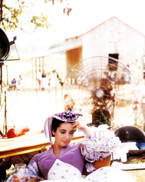 Elizabeth Taylor on the set of Raintree County (1957). Photo by Bob Willoughby