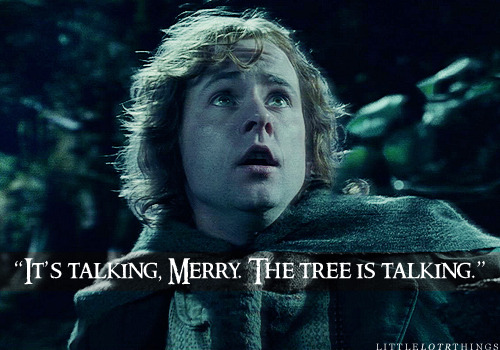 """It's talking, Merry. The tree is talking."" Submitted anonymously."