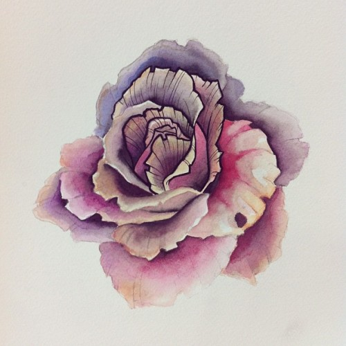 Watercolor marker rose. Practicing new techniques… And I apparently painted on the wrong side of the paper. Great.  (Taken with instagram)