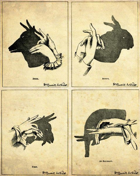 compendium-of-beasts:  [Shadow puppets: deer, bunny, goat, elephant]