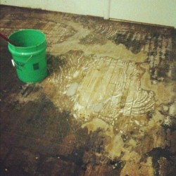 So this is what Stage 3 of uncovering our original hardwood floors looks like. After removing the carpet & padding, then scraping up all the old tiles, it's time to soak & scrape the old tar paper with hot water & Pine-sol. Thennn, we'll either seal it or white-wash it. I've seen a lot of cool painted hardwood floors on Pinterest lately! #floor #hardwood #renovation #bucket #soak #scrape #uncover #original #hardwood #flooring #floor #DIY #hardwork (Taken with instagram)