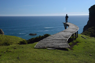 Walk south of Cucao, Chiloe.