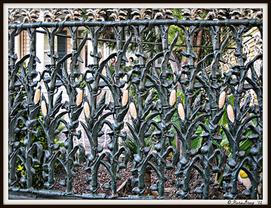 floriegray:  Louisiana Attention to Detail. New Orleans' Famous Wrought Iron Cornstalk Fence; French Quarter