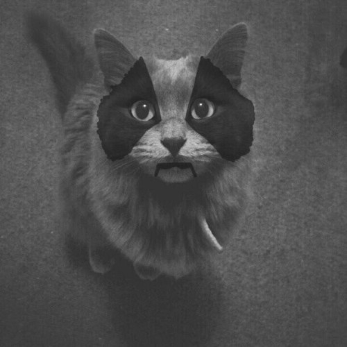 My Best One Yet #CorpseCat #CapricaSix (Taken with instagram)