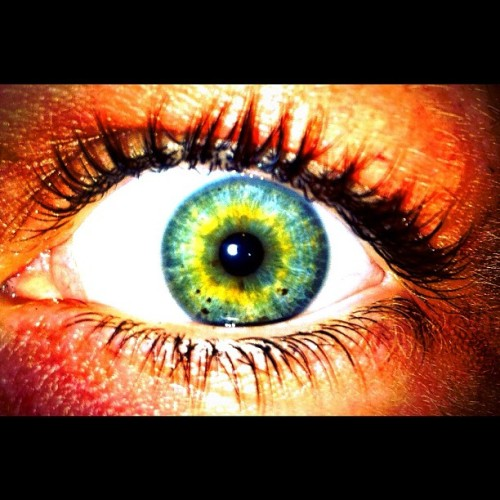 #nofliter getting more yellow everyday #yellow #blueeyes #greeneyes #eyes #pretty #eyelashes #creepy #love #instagood   #instagram #instamood #igers #iphone #nomakeup  (Taken with instagram)