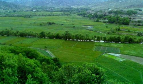 watanafghanistan:  This is Paktia Afghanistan