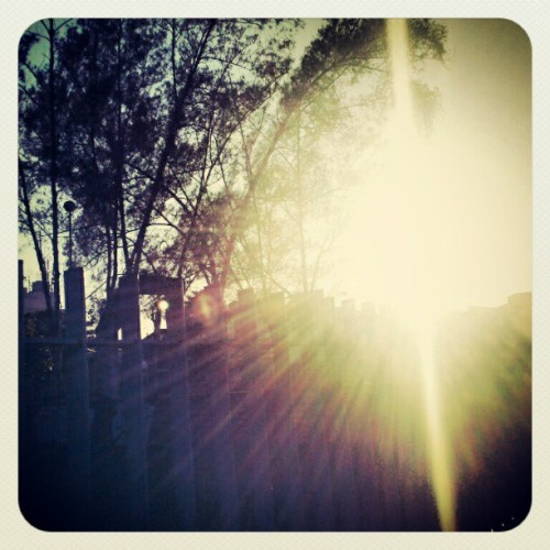 #good #morning #sunrise #beautiful #day #natural #art |Bom dia pessoas! |#GodBlessU (Publicado com o Instagram)