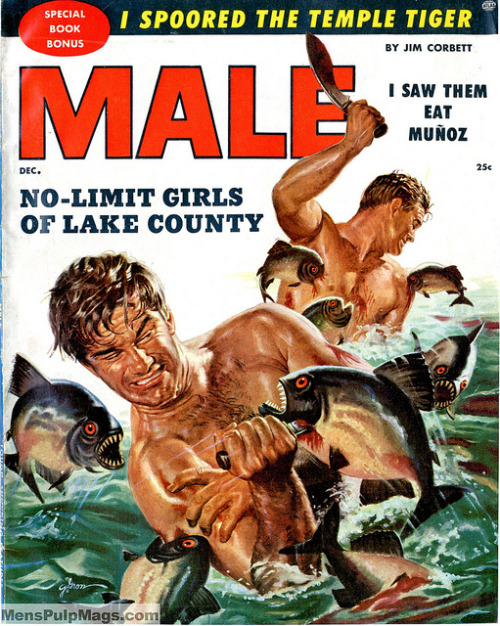I saw them eat Muñoz! or No-Limt Girls of Lake County! MALE, December 1955. Cover by George Gross by SubtropicBob on Flickr.