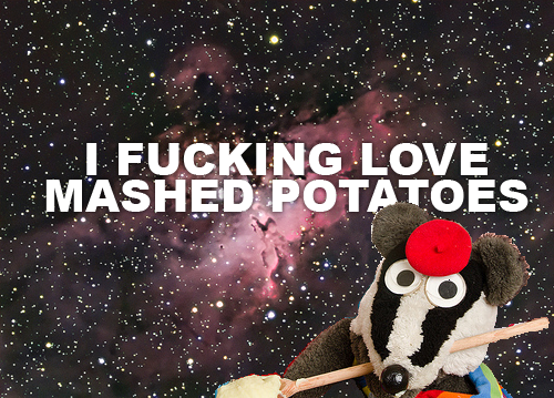 meme-city:  I freekin love mashed potatoes For more Awesome Memes on Meme-City Tags: badger, mashed potoato, badger meme