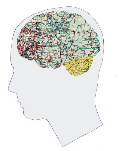 dshamdai:  travel on the brain.