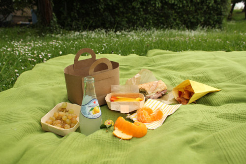 fancy a picnic?
