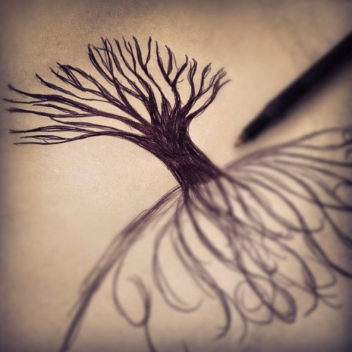 I have a slight fascination with trees. {trees without leaves} #sketch #tree #doodle #ink (Taken with instagram)
