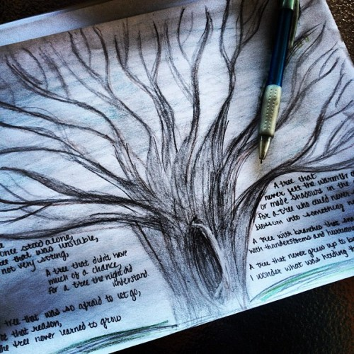{trees without leaves} Another tree sketch. #tree #sketch #instagram #iphone #doodle #drawing