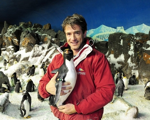imwithkanye:  Happy World Penguin Day! Here are a few posts to help you celebrate:  This Penguin Chick Doesn't Like Having Its Picture Taken Penguin Paparazzi Dermot Mulroney With Penguins Penguins Take Over An Airplane On The Most Adorable Flight Ever Lucky Lady Gets Hugged By A Penguin Top 5 Hilarious Penguin Moments Emperor Penguin Loves Everyone Penguin Cat