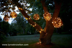 Grapevine Lighting Balls !!! what aa great ideaa!! Love craftgawker.com. http://www.lynneknowlton.com/2012/04/13/diy-grapevine-lighting-balls-what-a-bright-idea/