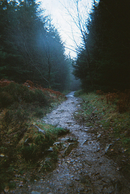 alldoomandgloom:  untitled on Flickr.