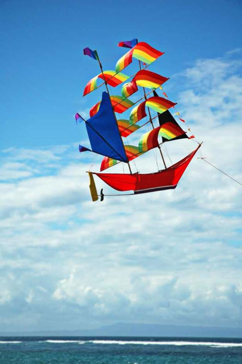 naniyou:  Most awesome kite ever
