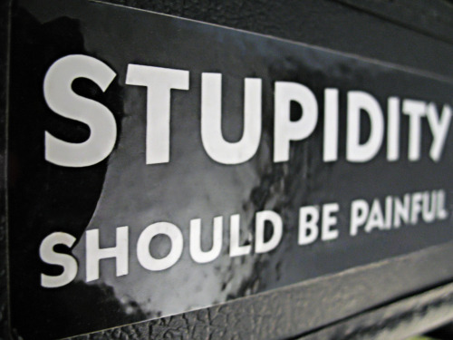 """Stupidity Should Be Painful"" by LAB7 (a photo of my guitar case)"