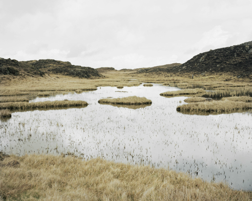 mpdrolet:  From Bogland Paddy Kelly