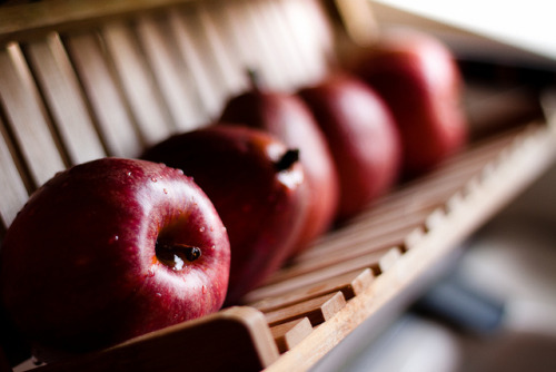thechubbyfoodist:  Them apples by Hayley Ross…is busy on Flickr.