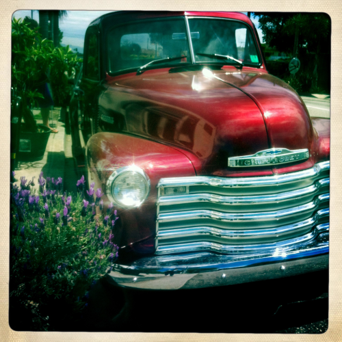 Chevy.   Rose, venice beach.