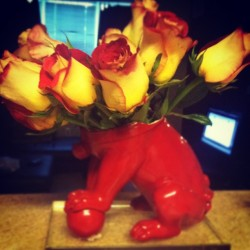 Turned my lion statue, that 🐶 broke, into a flower vase. 💐🌸🌷🌹🌺☺ (Taken with instagram)