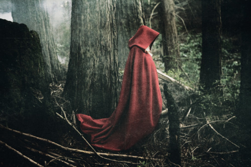 makes me think of the little red riding hood costume… awwww  red-lipstick:  Eliot Lee Hazel - Le Fawnhawk (Music), 2010