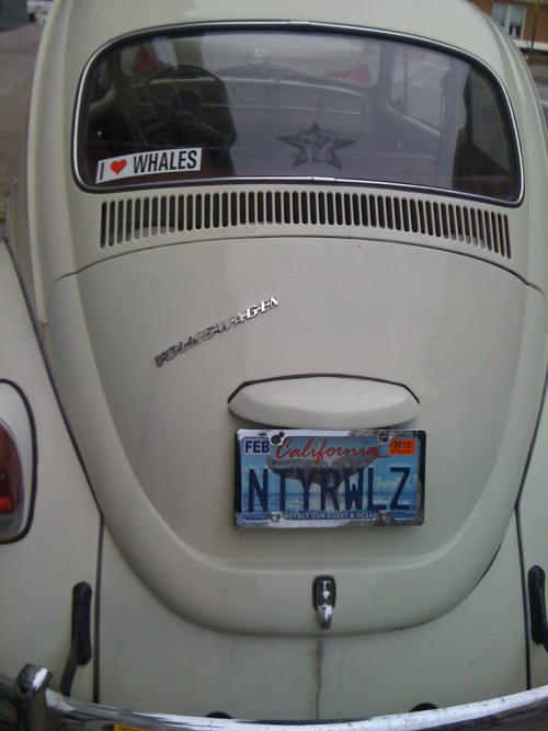 My car, Pavel, with new plates. Extra relevant because we live in San Francisco. It's perfect because if you get the reference, you're too geeky to make fun of me for being geeky enough to have this on my car. Vintage 1701-A bumper sticker and command insignia decal go on as soon as I decide where to stick em.