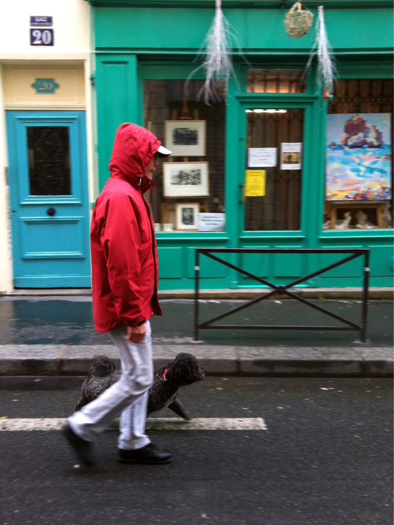 RGB with black dog (isn't CMYB).  Paris, Belleville, April 25th, 2012 (with a lil panning).
