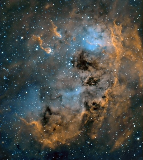 Emission Nebula in Auriga Copyright: Nik Szymanek