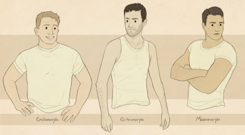 three major body types