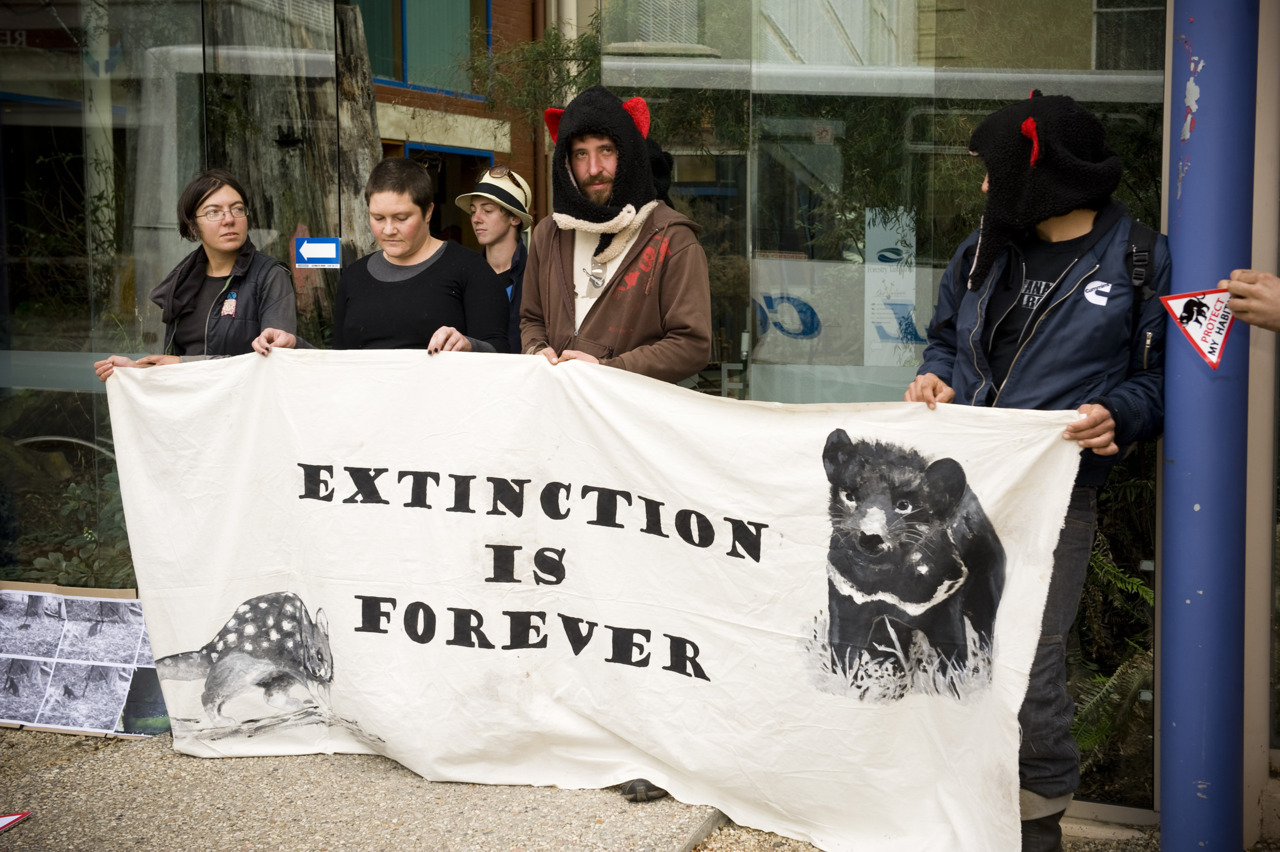 "TASMANIAN DEVILS DEMAND DEN PROTECTION 26th April 2012 – 15 conservationists from Still Wild Still Threatened, Huon Valley Environment Centre and Code Green are conducting a ""sit in"" at Forestry Tasmania's Hobart headquarters, dressed as Tasmanian devils. The groups are calling for the protection of maternal devil den sites and formal reserves to secure habitat areas. The ""devils"" have occupied the atrium of the Forestry Tasmania building and are refusing to leave. Today's action highlights community concerns surrounding recent findings of a healthy juvenile devil in an area scheduled for logging, in the forest of the Tyenna Valley, surrounding The Observer Tree. Miranda Gibson, permanent resident of The Observer Tree platform for the past four months, released footage of the young devil on Monday ""This footage is evidence of the existence of devil dens in the area. In December Still Wild Still Threatened released footage of a mother devil in the same location. Had logging proceeded in this area over summer, the maternal den site would have been disturbed and this young devil may not have survived. This highlights the importance of protecting these forests for the future survival of this species"" said Ms Gibson ""Maternal dens are used from generation to generation. It is likely that this young devil may raise young in the same area. With these findings it is now more critical than ever that these high conservation value forests are formally protected"" said Ms Gibson. ""Tasmanians are calling for greater protection for Tasmania's most iconic species. The Tasmanian devil and other endemic species are at risk of extinction due to rapid decreases in population and secure undisturbed habitat. The community is demanding Forestry Tasmania and the State Government install immediate measures to ensure the restoration and protection of habitat for our unique species. Protection of the 572,000ha of native forests, over half of which were identified by the government's experts as key habitat for the Tasmanian Devil, is the obvious first step to take."" said spokesperson for today's action Ali Alishah (Still Wild Still Threatened). UPDATE: Four conservationists have been arrested today at Forestry Tasmania's Hobart headquarters. An alliance of forest groups including Still Wild Still Threatened, Huon Valley Environment Centre and Code Green conducted a ""sit in"" dressed as Tasmanian devils. The ""devils"" occupied the atrium of the Forestry Tasmania building and refused to leave. Four demonstrators were arrested and charged with committing a Trespass. They have subsequently been released on bail. ""Today's successful action has shown the level of community concern regarding the welfare of this endangered species. With recent findings of a healthy juvenile devil in the forest near the base of my tree, there has been widespread concern about the impact of logging operations on young devils and in particular on maternal devil dens"" said Still Wild Still Threatened spokesperson Miranda Gibson. ""These committed conservationists today have risked arrest in order to highlight the plight of the endangered Tasmanian devil. The protection of habitat and maternal den sites is a critical first step to ensuring the survival of the Tasmanian devil"" said Ms Gibson."