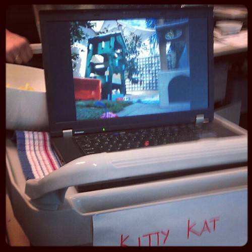 Lookout! KittyCatCamCart coming through #kittycam #fedexday  (Taken with Instagram at iiNet)