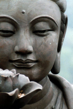 "lotusmeditations:  ""As a lotus flower is born in water, grows in water and rises out of water to stand above it unsoiled, so I, born in the world, raised in the world having overcome the world, live unsoiled by the world"".  - Siddhartha"