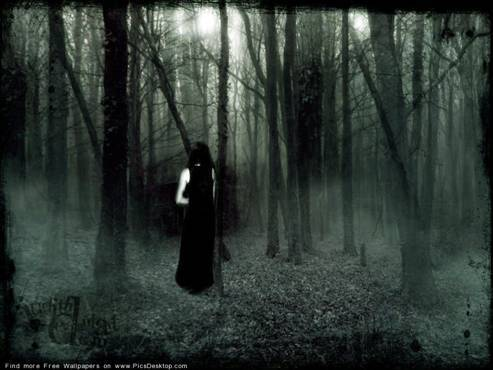 Gothic Scene of Darkness and a Forest