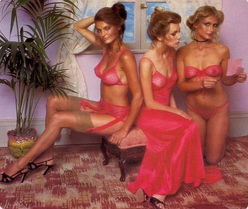 This is an extract from the Victorias Secret catalogue in 1979. The Victorias Secret girls have always been drop dead. Love this.