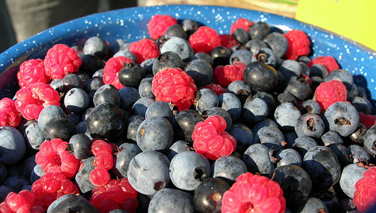 mothernaturenetwork:  Eating berries may slow brain's declineWomen who eat blueberries and strawberries experience slower mental decline with age than women who consume fewer of the flavonoid-rich fruits.