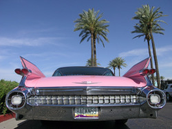 My favourite car<3 1959 Cadillac DeVille