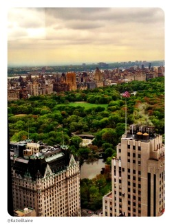 "nycgov:  ""A Beautiful View"" by Katie Blaine"
