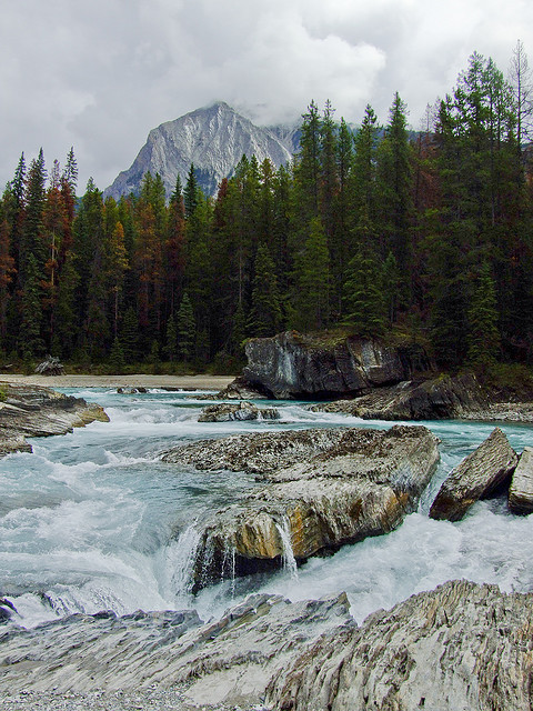 Kicking Horse River by Feffef on Flickr.