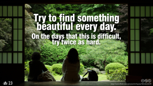 Try to find something beautiful every day. On the days that this is difficult, try twice as hard.