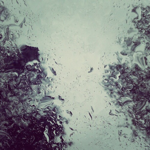 Holy Cats N' Dogs, Batman! It's raining! (Taken with instagram)